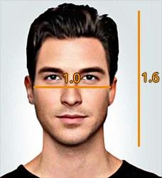 golden ratio face