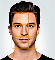 facial thirds