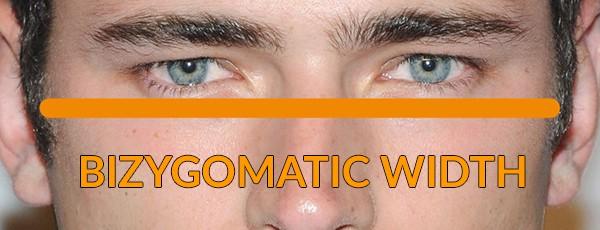 bizygomatic width